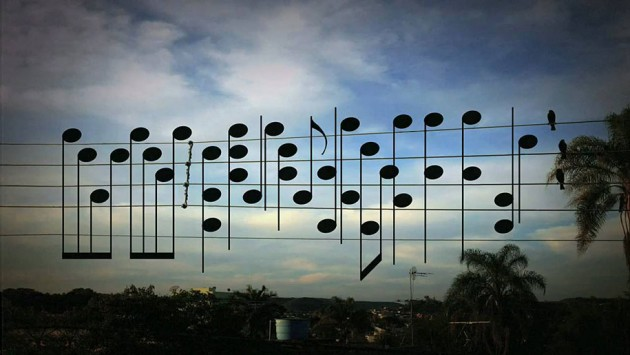 brazilec ptici noti