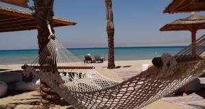 beach-641548_640