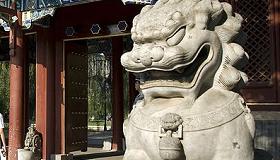 peking uni