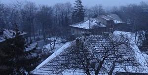 snow sofia