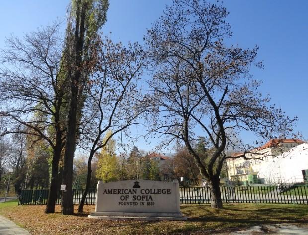 info sresta american college 2013 3