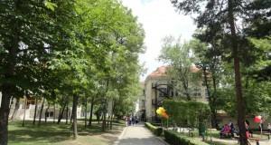acs alley
