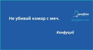 citat konfucii komar mech