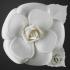 coco chanel camellia 2