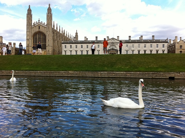 kings-college-60889_640