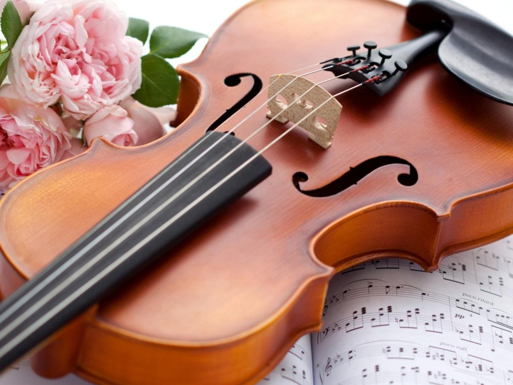 violin-rose-wallpaper-408h