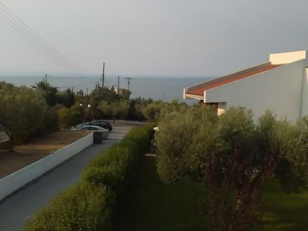 kusta-greece5