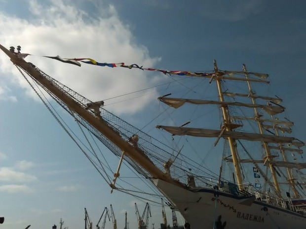 regata-42