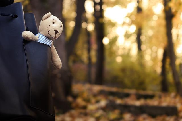 bear-1802370_640