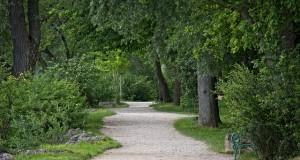gravel-road-1450550_640
