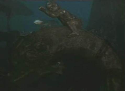 momche delfin