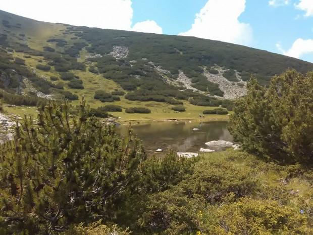 rila planina 3