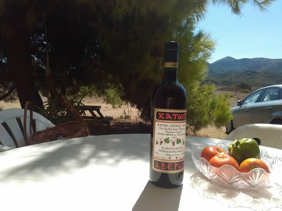 Подарък от хазяина - вино и зеленчуци от градината му
