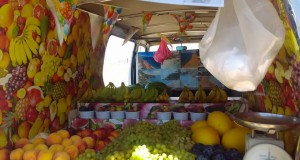 korfu kusta 45 mobilen plod i zelenchuk 3