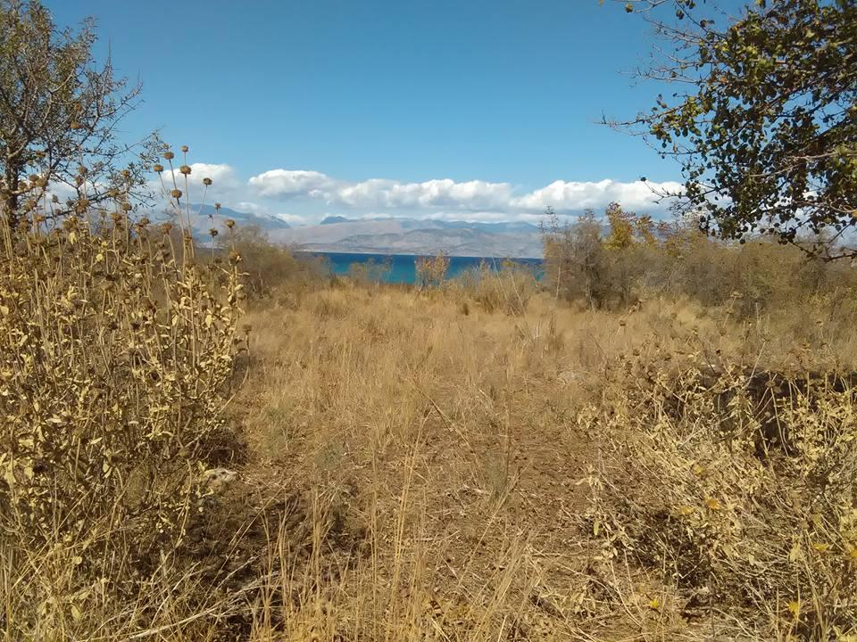 Agios Spiridon Plaj corfu 17