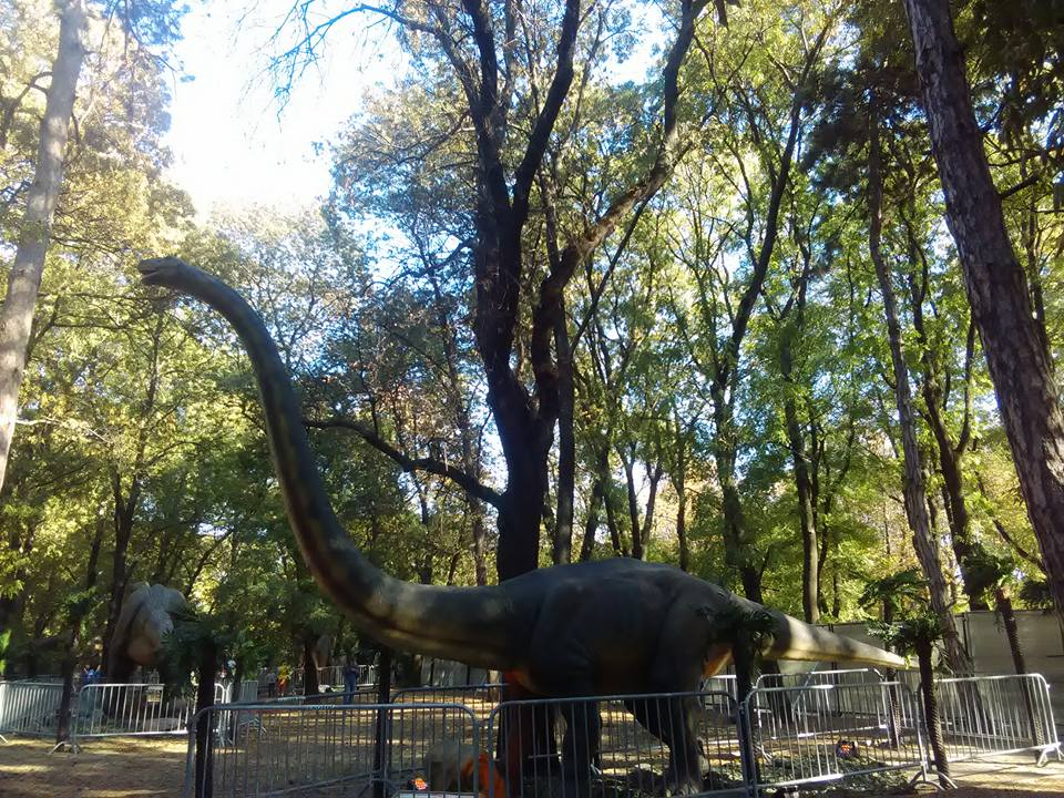 dinozavri 11