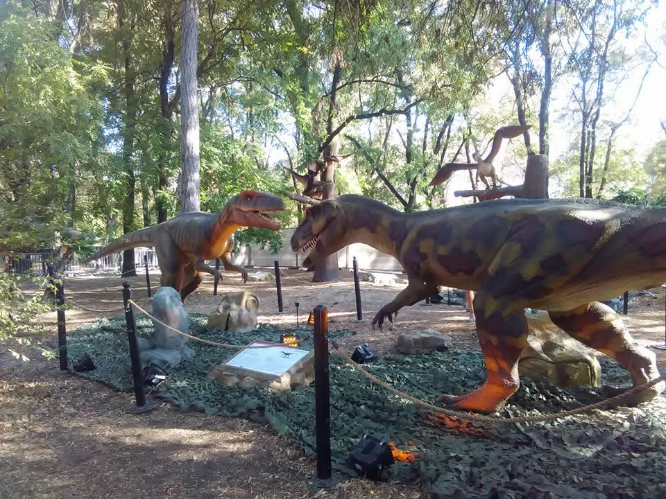 dinozavri 15