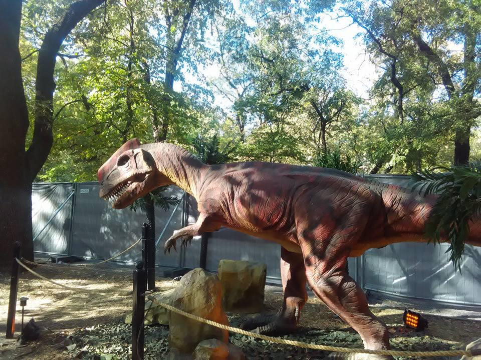 dinozavri 16