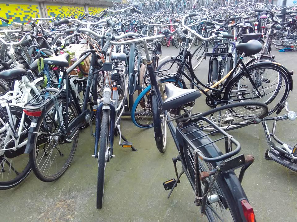 eindhoven velosipedi 46