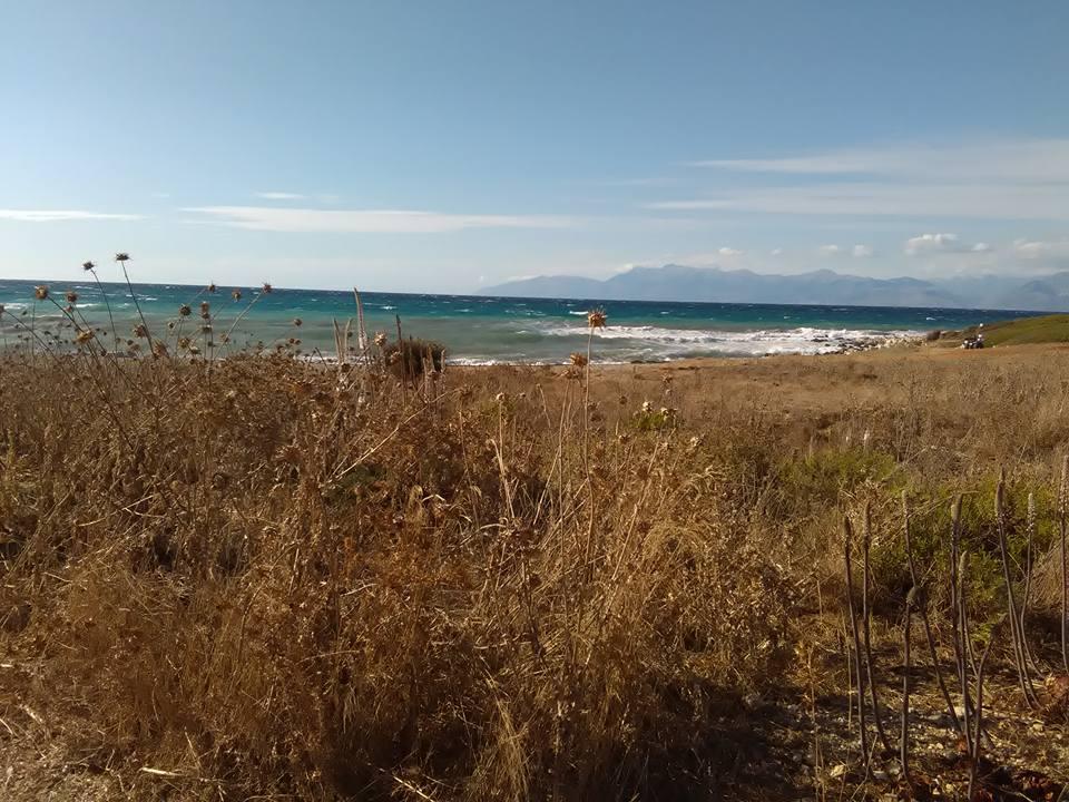 plaj corfu 32