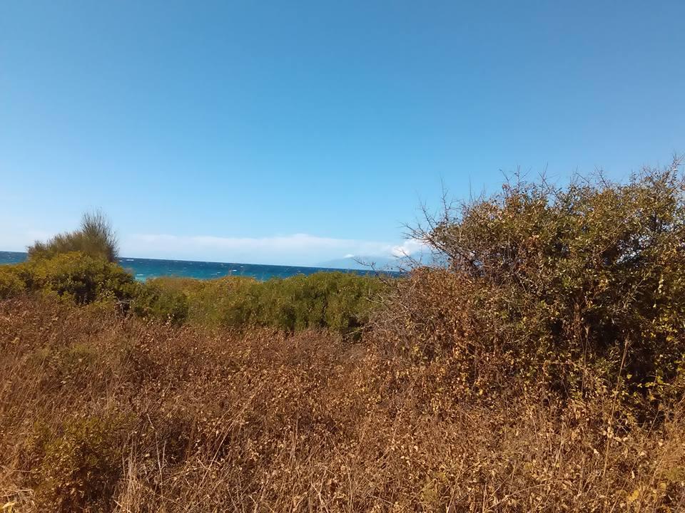 plaj corfu 39