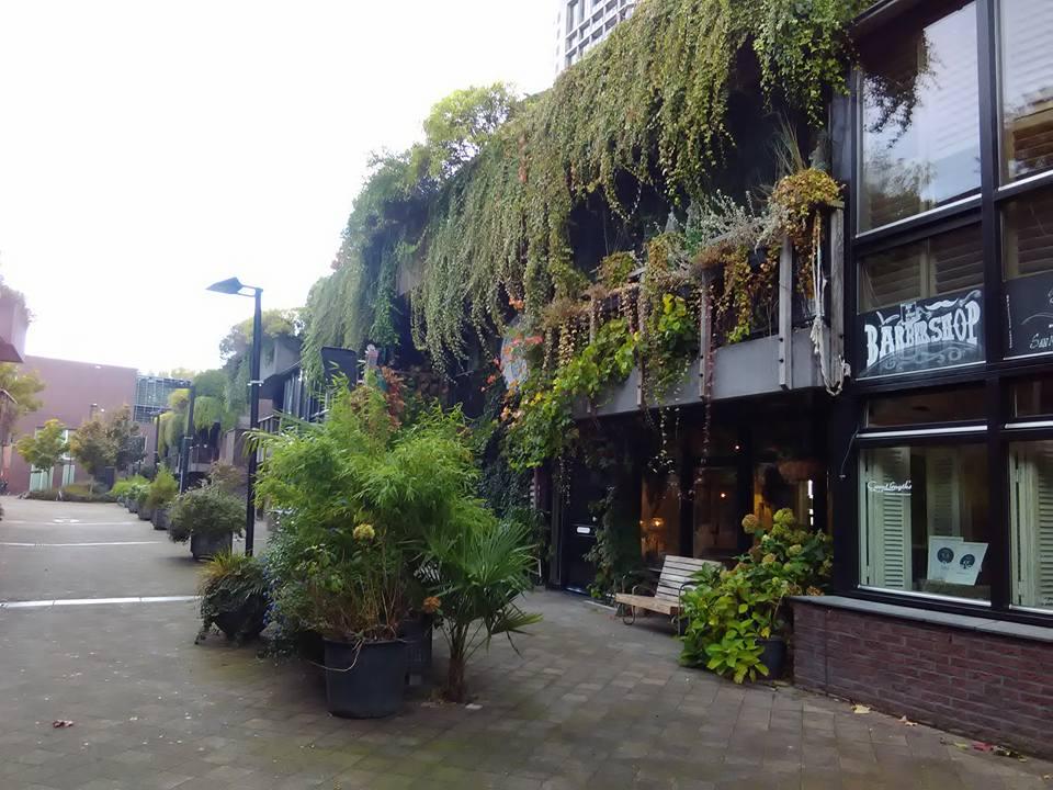 Eindhoven 70