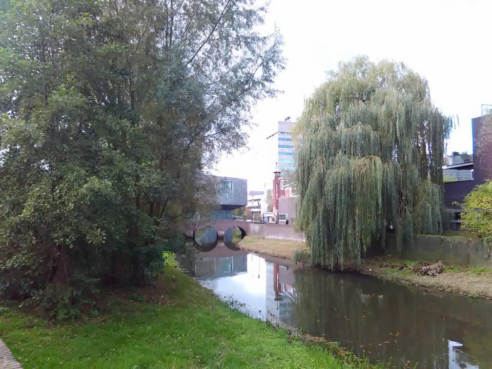 Eindhoven 75
