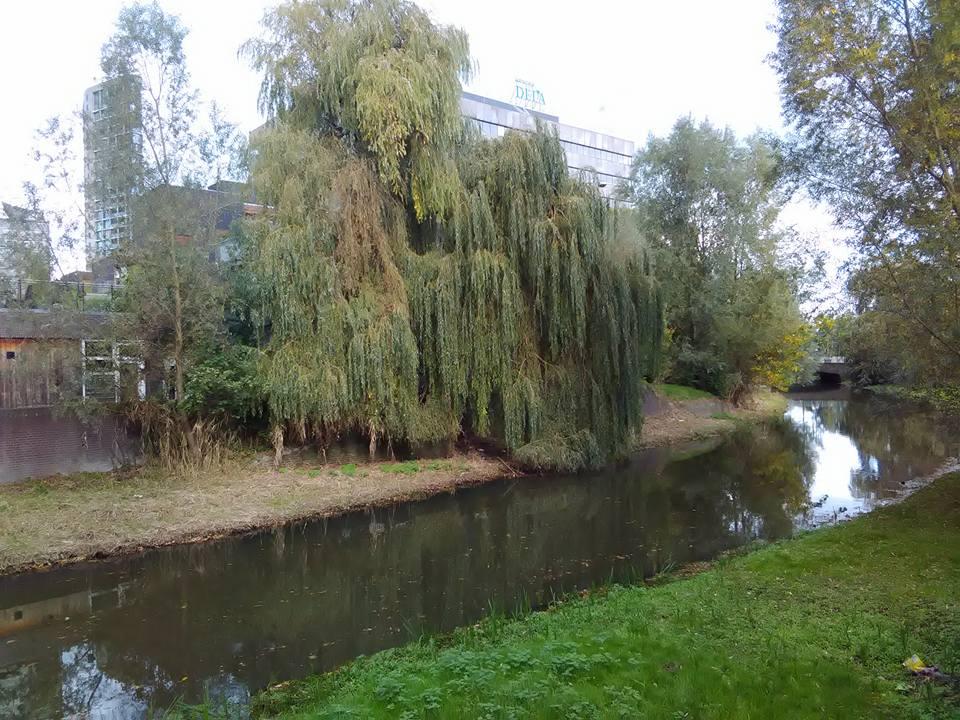 Eindhoven 77