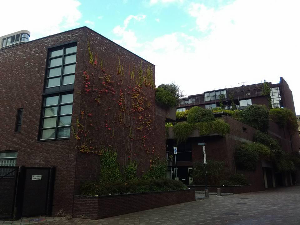 Eindhoven 87
