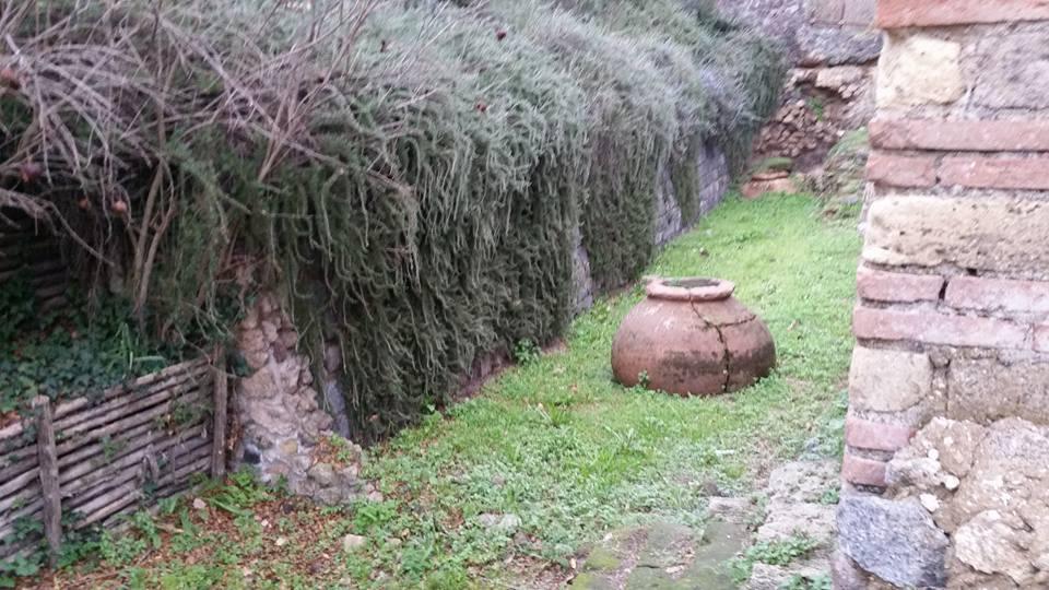 pompeii 27 dec 2017 391