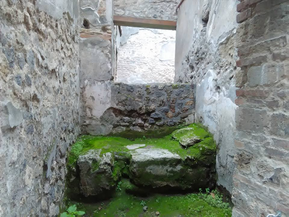 pompeii 27 dec 2017 99