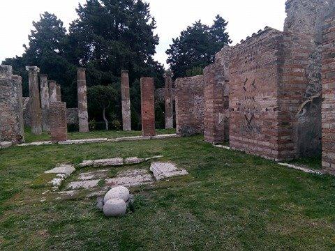 pompeii viki 36