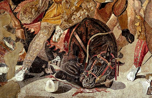 kon kopito alexander makedonski mozaika