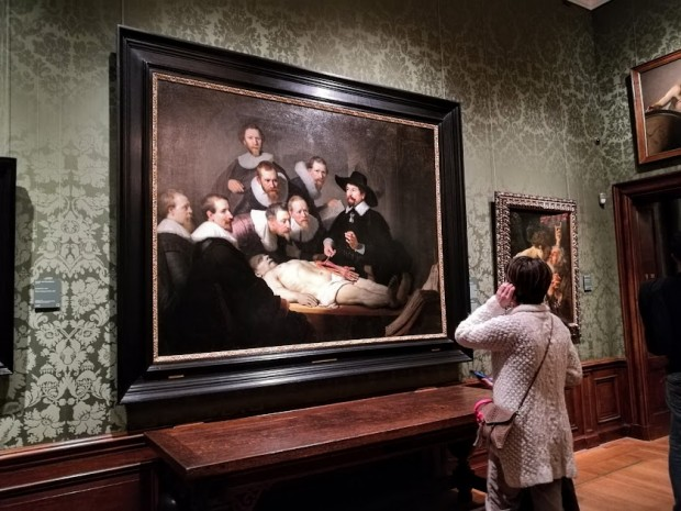 mauritshuis hague 25 urok po anatomia
