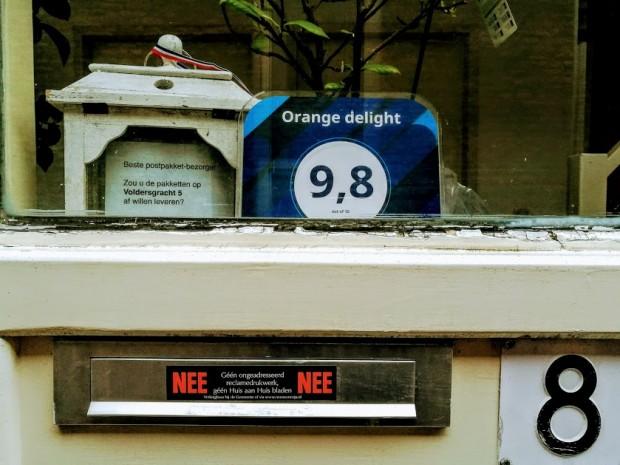 orange delight 11