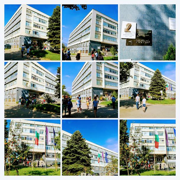 amc 2018 collage