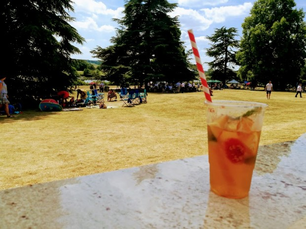henley business school pims