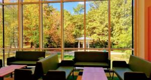 acs biblioteka gledka fontan 8