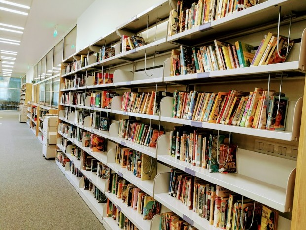 biblioteka acs 19