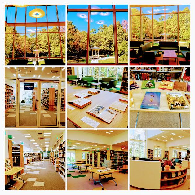 biblioteka acs 21