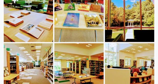 biblioteka acs 22