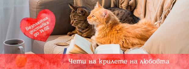 Valentin_856x315