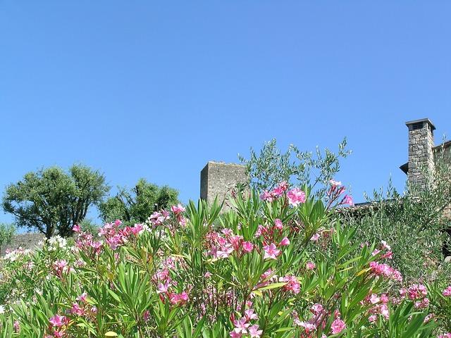 tuscany-401935_640