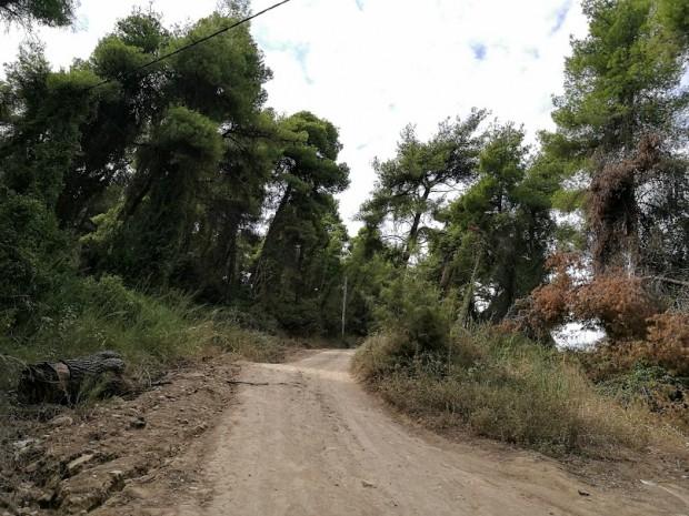 gora kriopigi