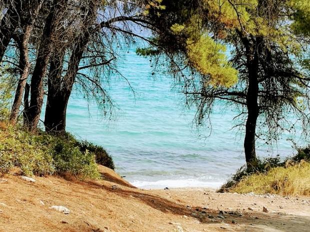 kriopigi plaj more 2