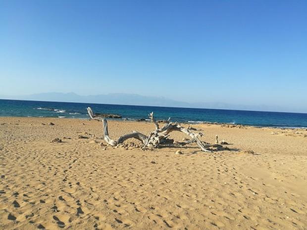 В центъра на плажа Агиянис в близост до морето