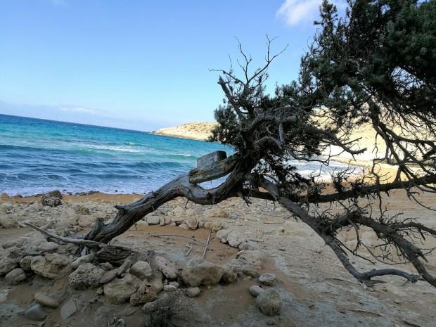 Гледка към плажа Потамос