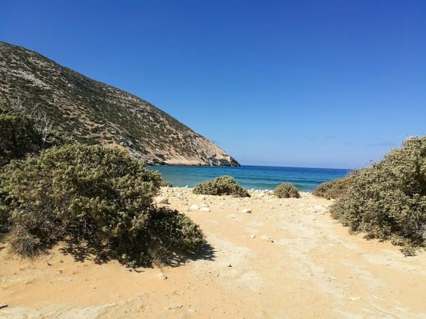 Плажът Потамос с красивите дървета и храсти