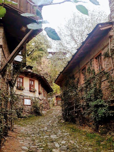 wpid-kovachevica-biliana-boneva-51684783461807554555..jpg