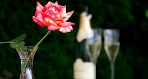 aperitif-1598259_640